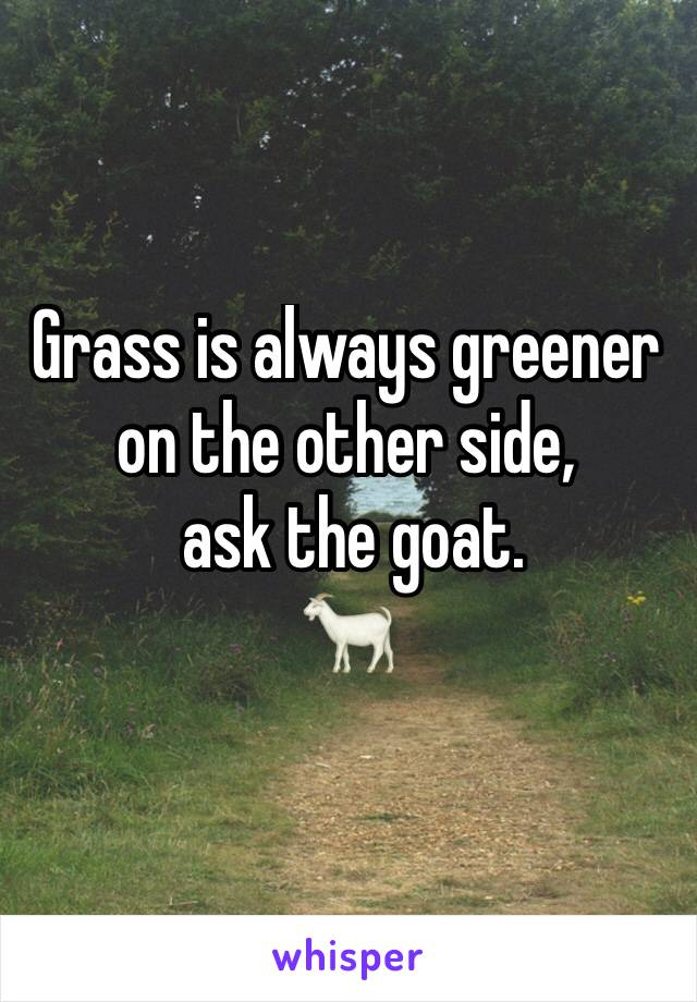 Grass is always greener on the other side,   ask the goat. 🐐