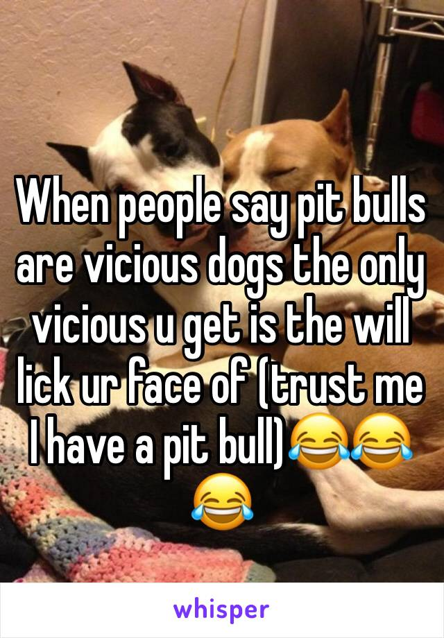 When people say pit bulls are vicious dogs the only vicious u get is the will lick ur face of (trust me I have a pit bull)😂😂😂