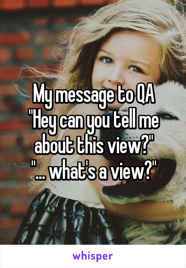 "My message to QA ""Hey can you tell me about this view?"" ""... what's a view?"""