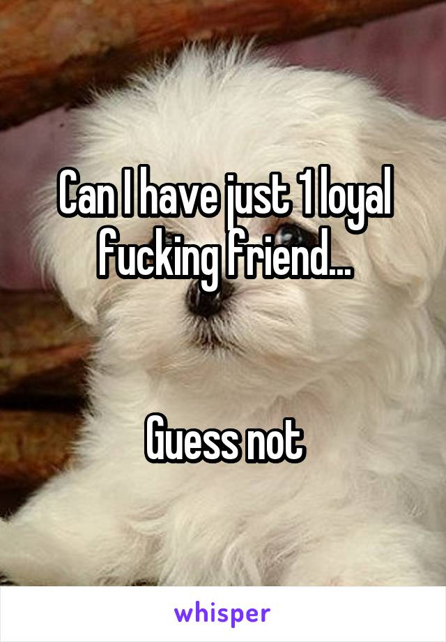 Can I have just 1 loyal fucking friend...   Guess not