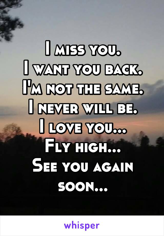 I miss you. I want you back. I'm not the same. I never will be. I love you... Fly high... See you again soon...