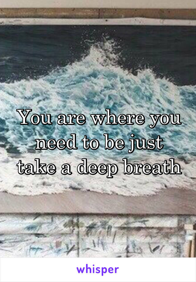 You are where you need to be just take a deep breath