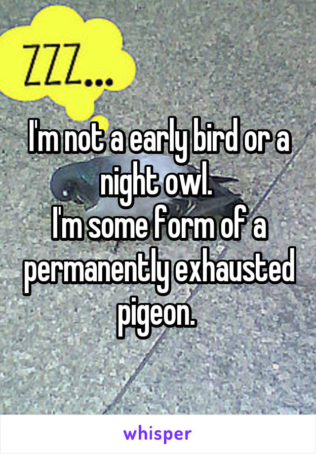 I'm not a early bird or a night owl.  I'm some form of a permanently exhausted pigeon.