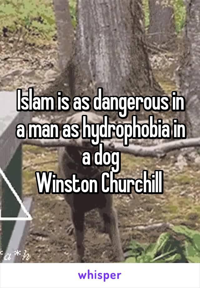 Islam is as dangerous in a man as hydrophobia in a dog Winston Churchill