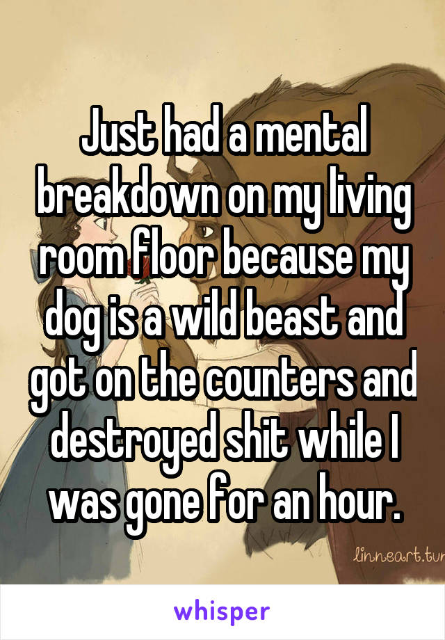 Just had a mental breakdown on my living room floor because my dog is a wild beast and got on the counters and destroyed shit while I was gone for an hour.