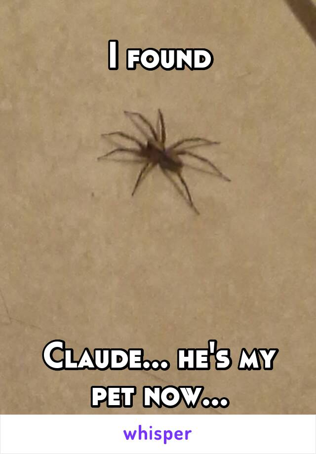 I found        Claude... he's my pet now...