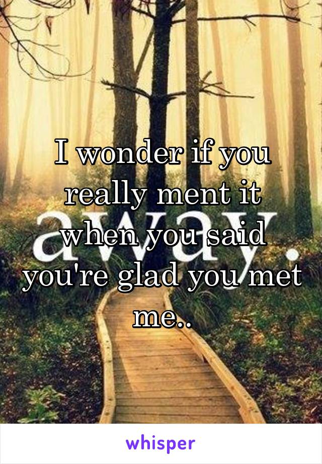 I wonder if you really ment it when you said you're glad you met me..