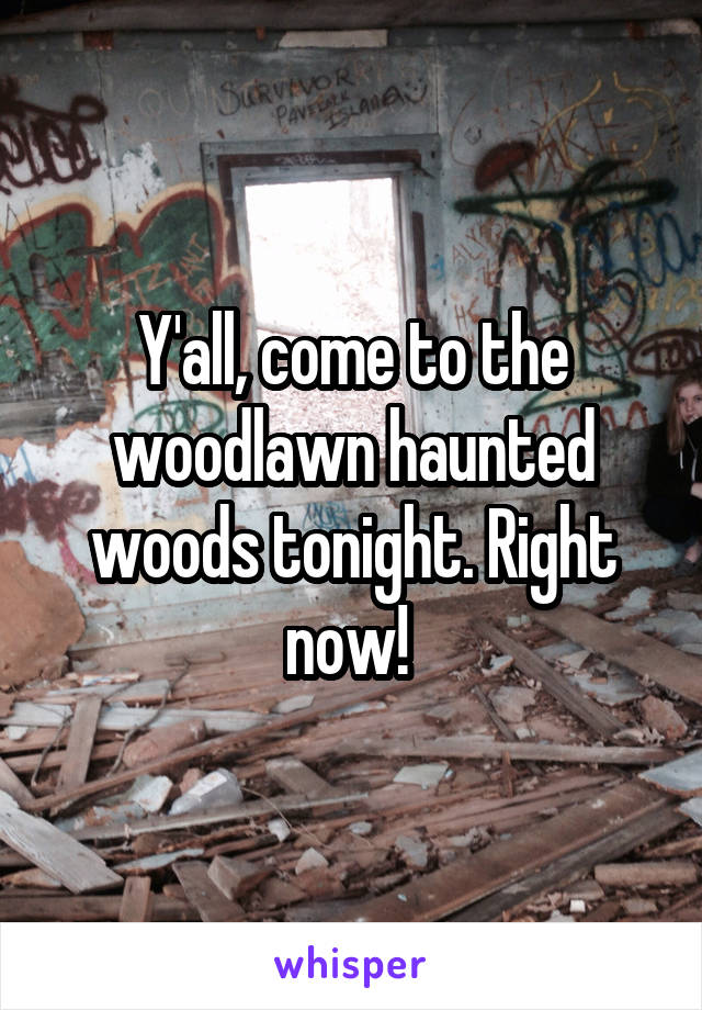 Y'all, come to the woodlawn haunted woods tonight. Right now!
