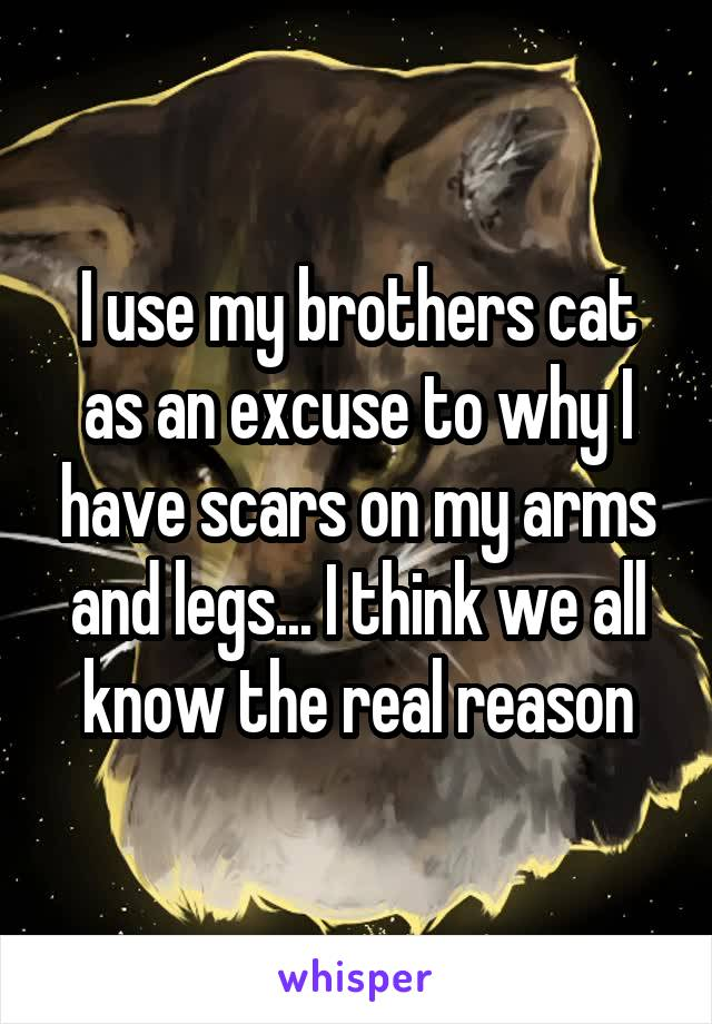 I use my brothers cat as an excuse to why I have scars on my arms and legs... I think we all know the real reason