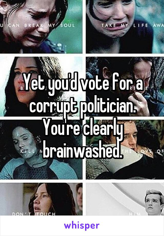 Yet you'd vote for a corrupt politician. You're clearly brainwashed.