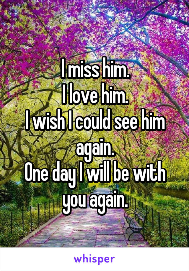 I miss him. I love him. I wish I could see him again. One day I will be with you again.