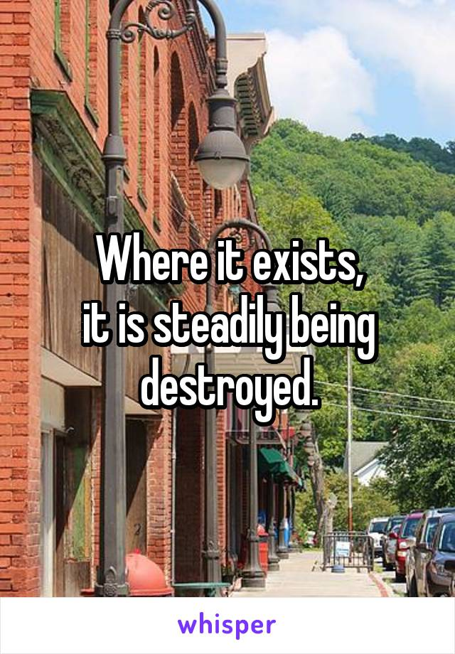 Where it exists, it is steadily being destroyed.