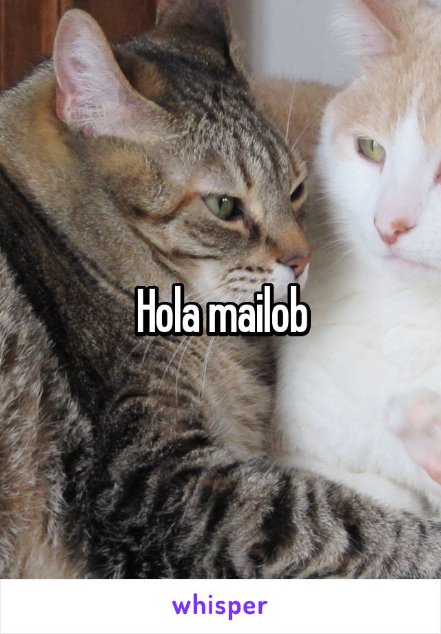 Hola mailob