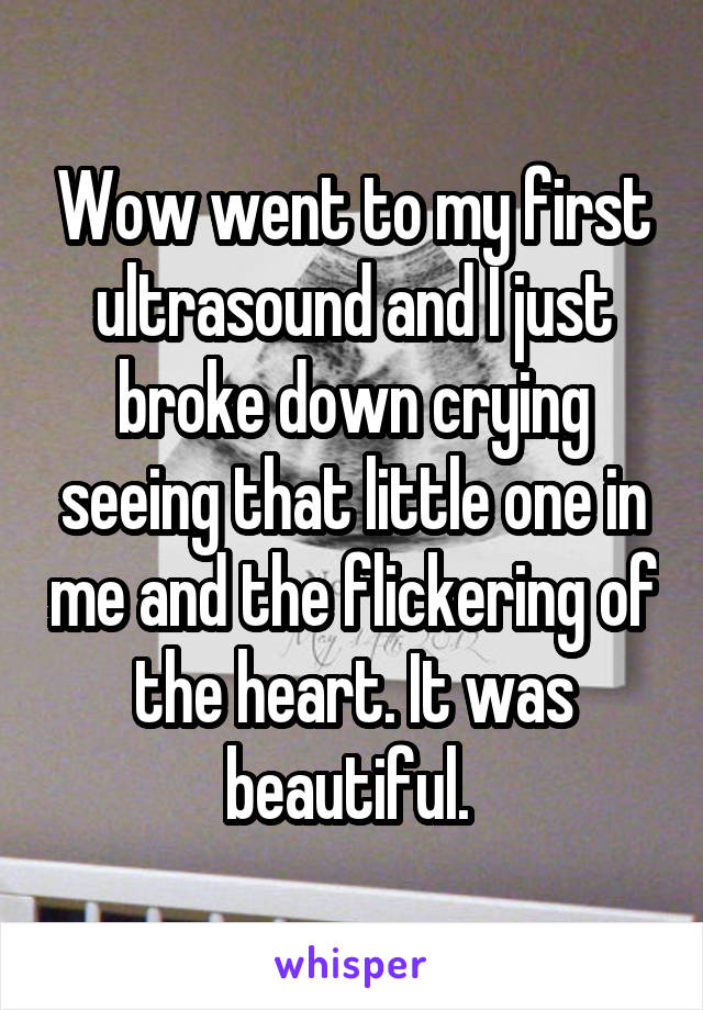 Wow went to my first ultrasound and I just broke down crying seeing that little one in me and the flickering of the heart. It was beautiful.