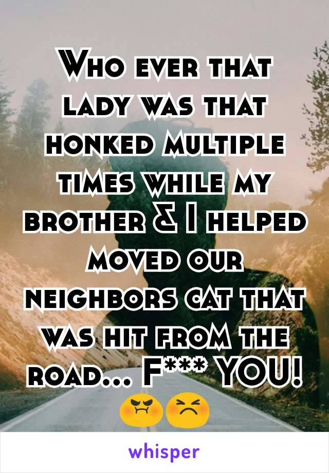 Who ever that lady was that honked multiple times while my brother & I helped moved our neighbors cat that was hit from the road... F*** YOU! 😡😣