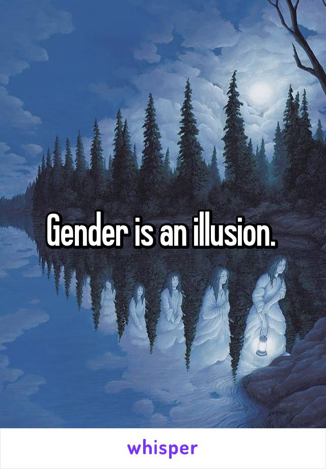 Gender is an illusion.