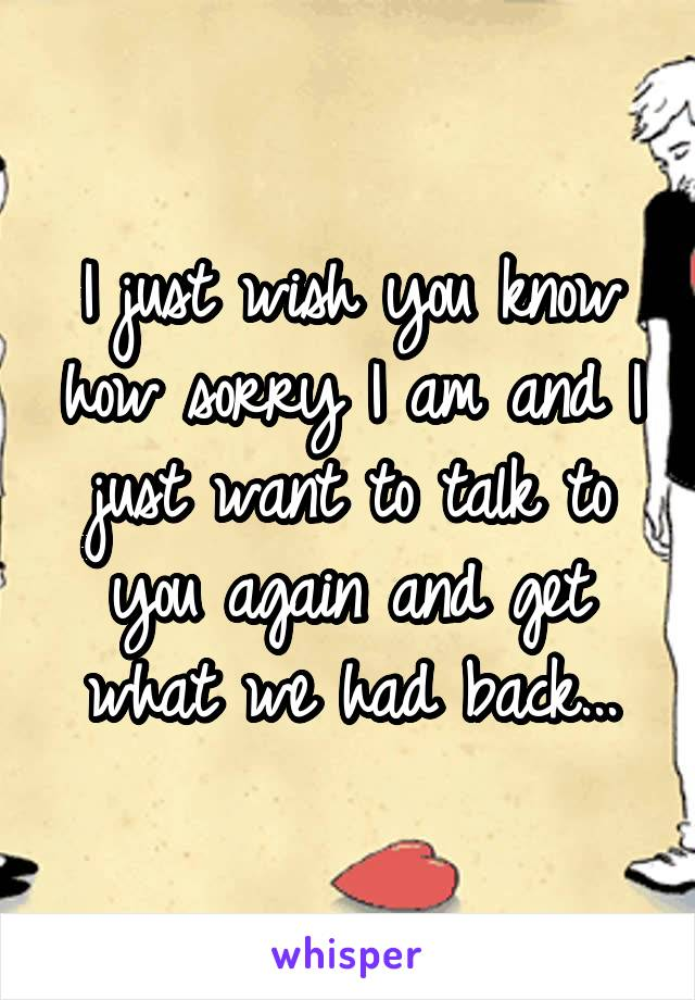I just wish you know how sorry I am and I just want to talk to you again and get what we had back...