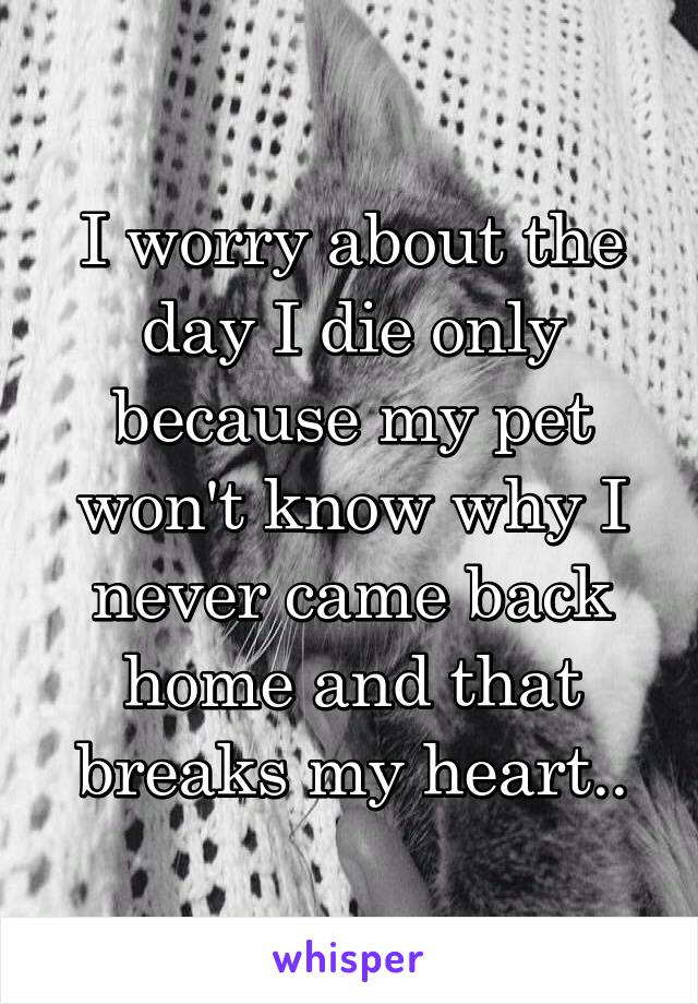 I worry about the day I die only because my pet won't know why I never came back home and that breaks my heart..