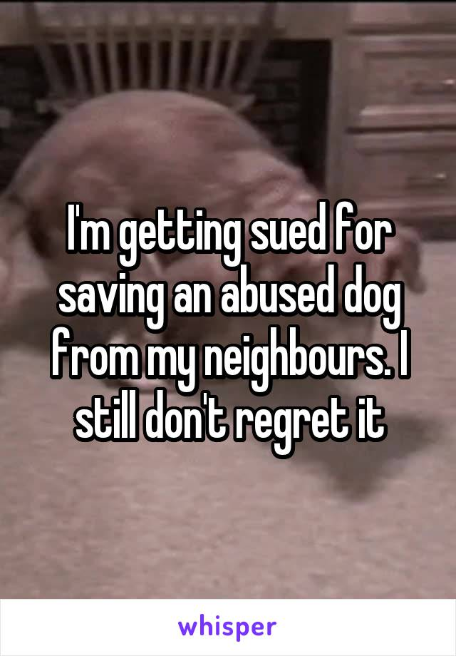 I'm getting sued for saving an abused dog from my neighbours. I still don't regret it