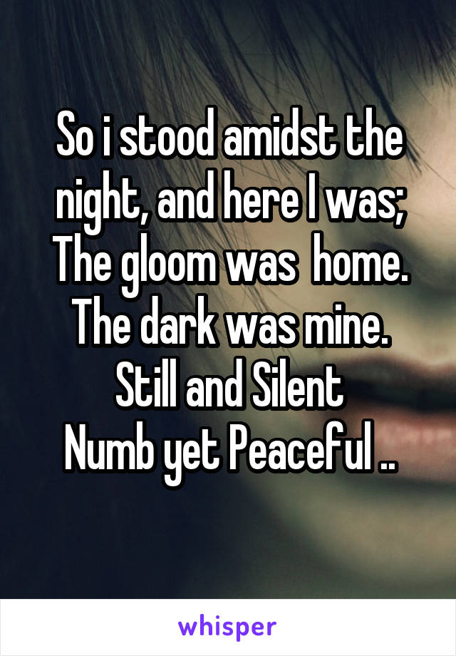 So i stood amidst the night, and here I was; The gloom was  home. The dark was mine. Still and Silent Numb yet Peaceful ..