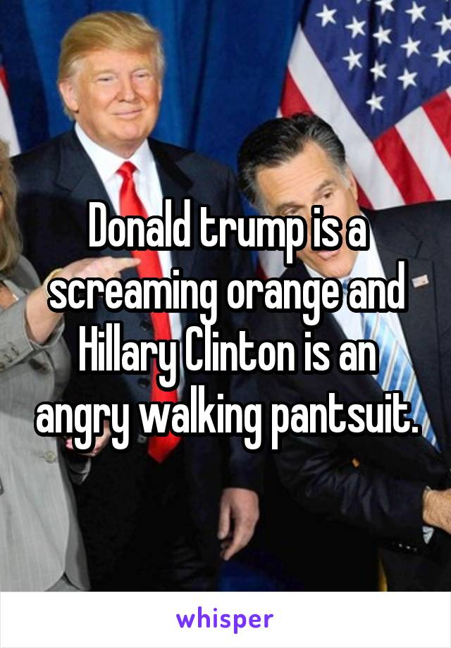 Donald trump is a screaming orange and Hillary Clinton is an angry walking pantsuit.