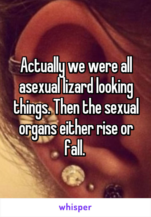 Actually we were all asexual lizard looking things. Then the sexual organs either rise or fall.