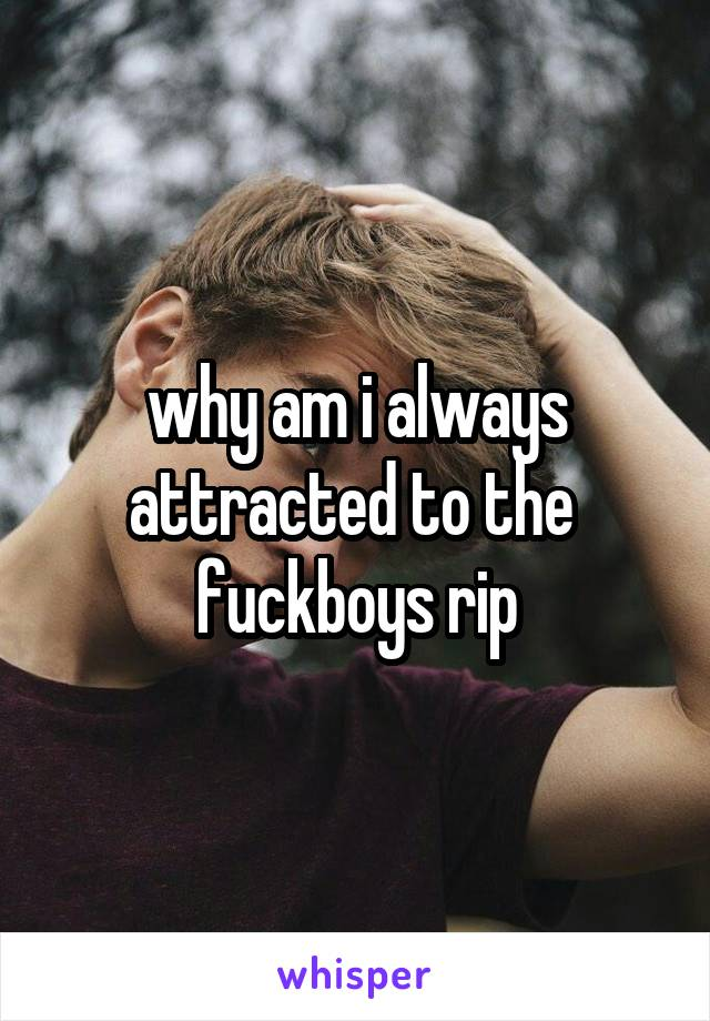 why am i always attracted to the  fuckboys rip