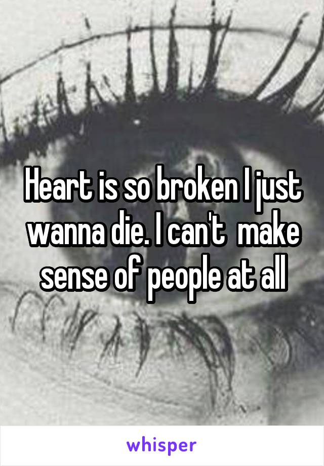 Heart is so broken I just wanna die. I can't  make sense of people at all