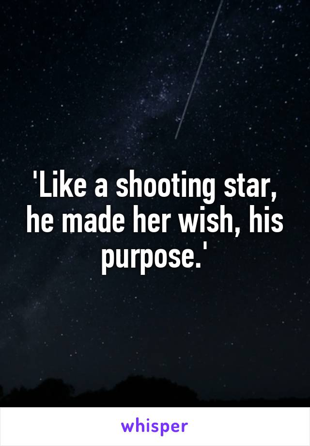 'Like a shooting star, he made her wish, his purpose.'