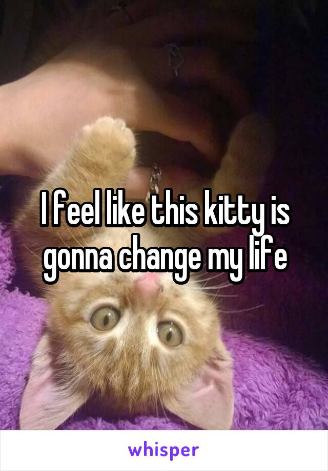I feel like this kitty is gonna change my life