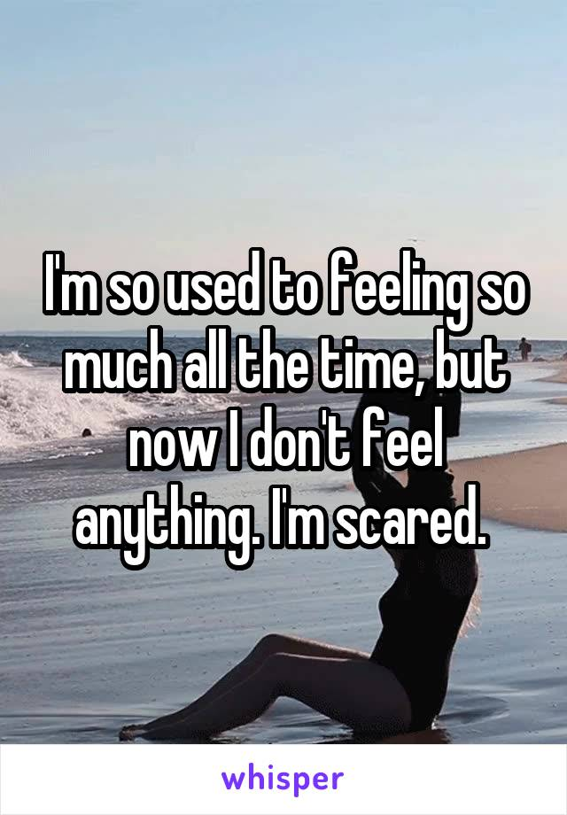 I'm so used to feeling so much all the time, but now I don't feel anything. I'm scared.