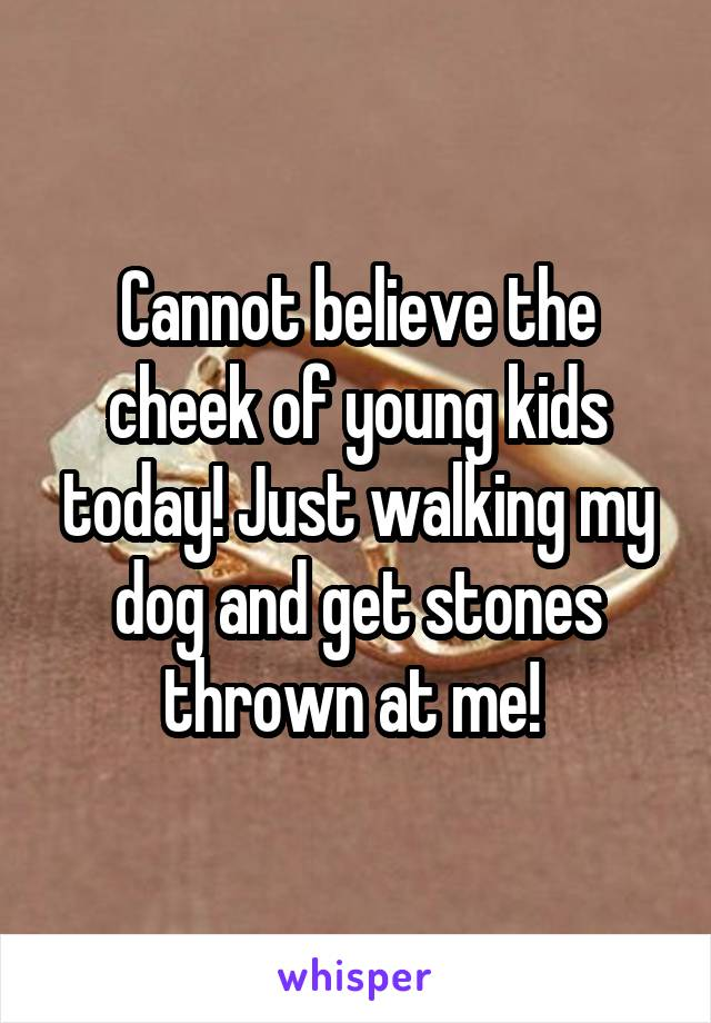 Cannot believe the cheek of young kids today! Just walking my dog and get stones thrown at me!
