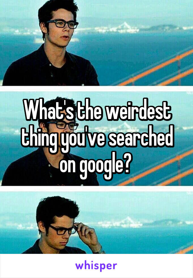 What's the weirdest thing you've searched on google?