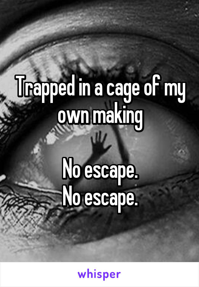 Trapped in a cage of my own making  No escape. No escape.