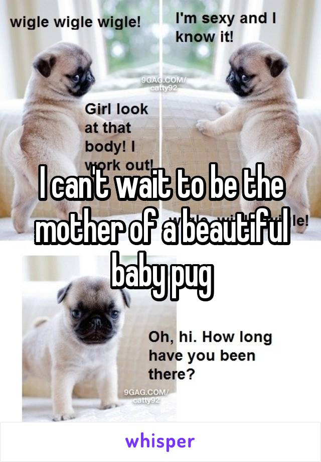 I can't wait to be the mother of a beautiful baby pug