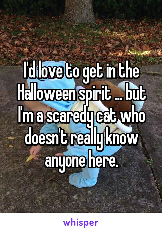 I'd love to get in the Halloween spirit ... but I'm a scaredy cat who doesn't really know anyone here.