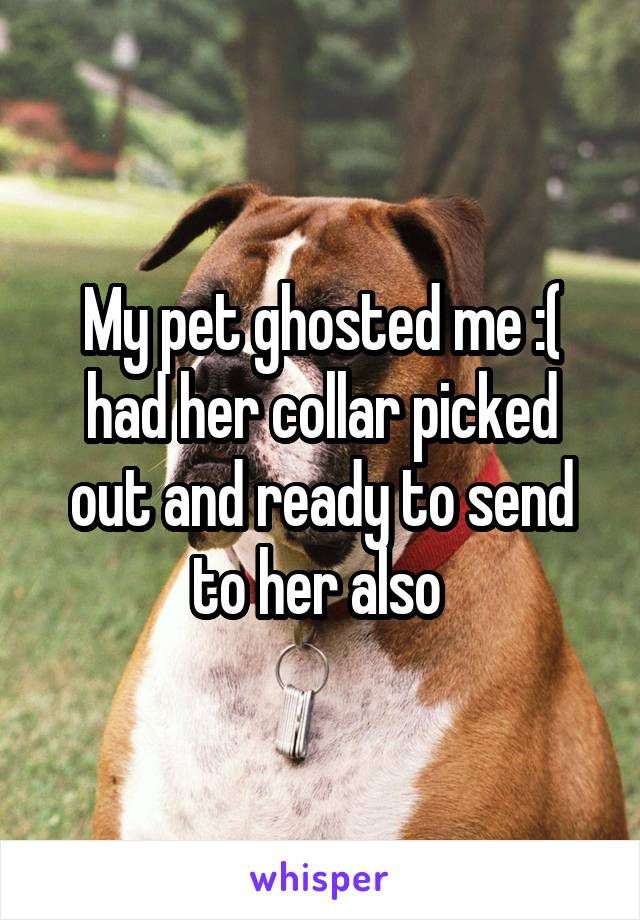 My pet ghosted me :( had her collar picked out and ready to send to her also