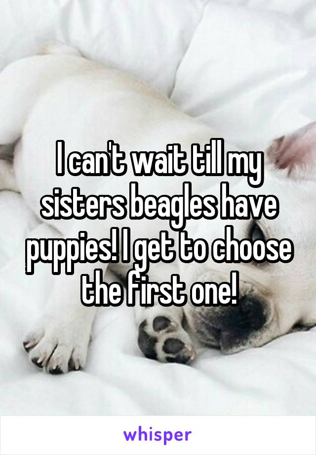I can't wait till my sisters beagles have puppies! I get to choose the first one!