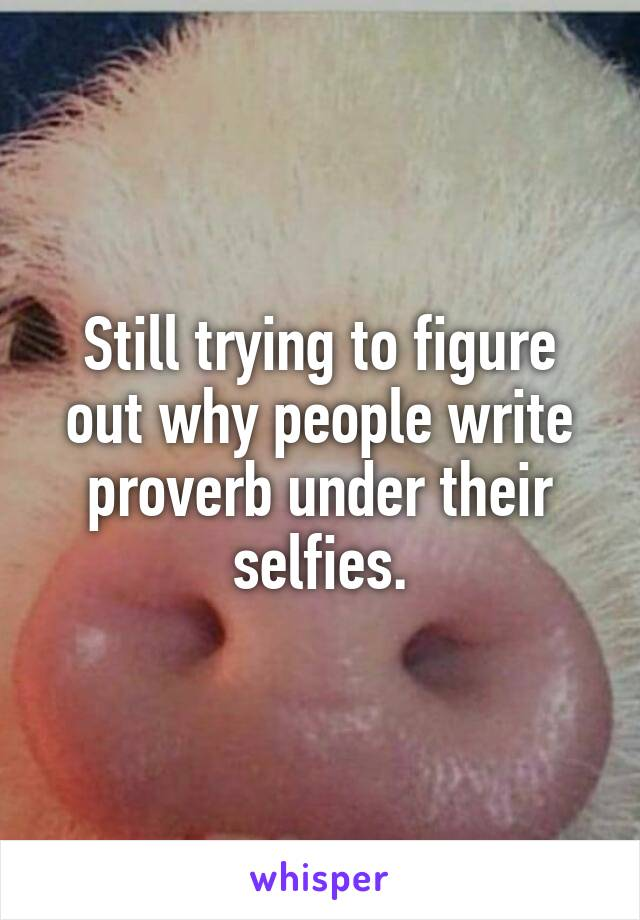 Still trying to figure out why people write proverb under their selfies.