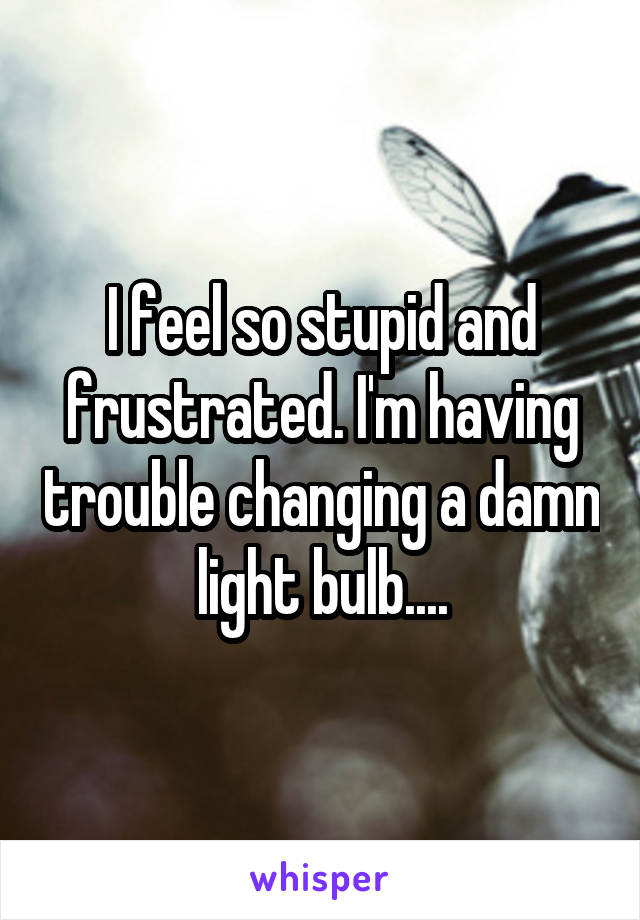 I feel so stupid and frustrated. I'm having trouble changing a damn light bulb....
