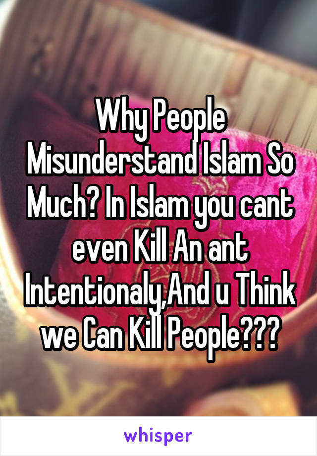 Why People Misunderstand Islam So Much? In Islam you cant even Kill An ant Intentionaly,And u Think we Can Kill People???