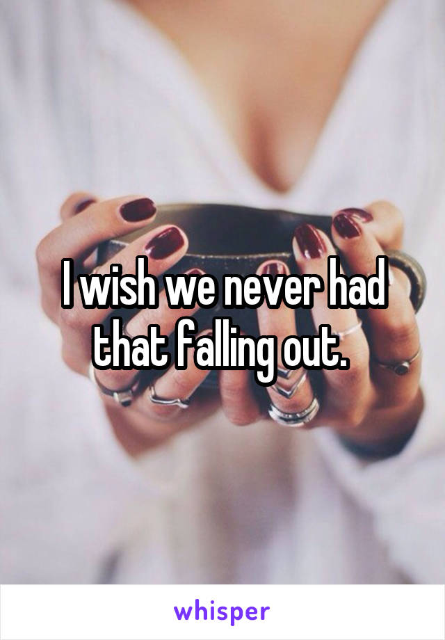 I wish we never had that falling out.