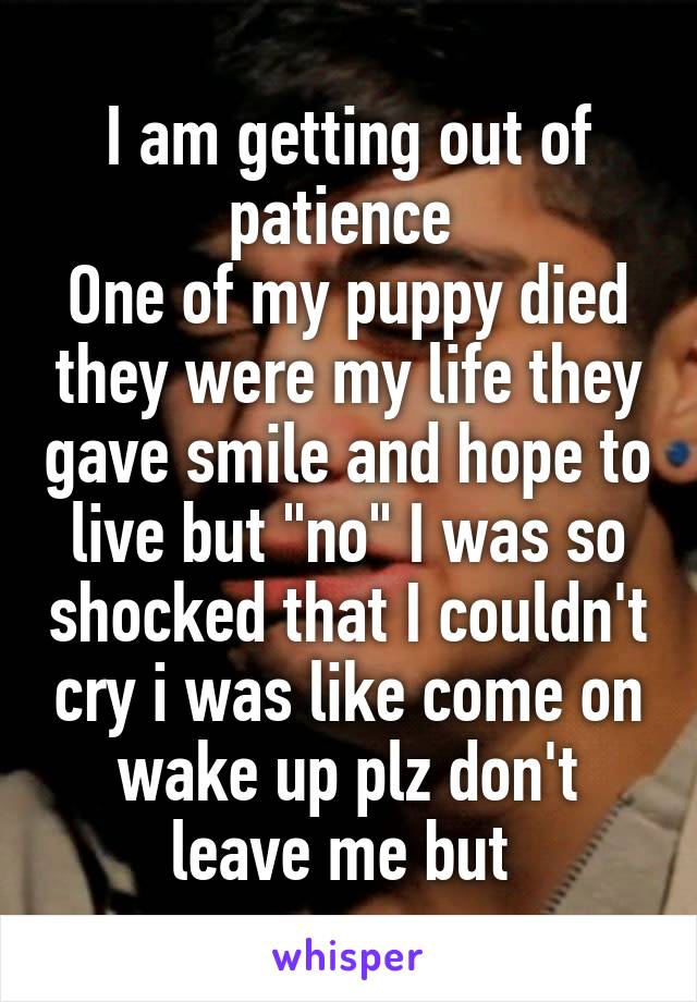 """I am getting out of patience  One of my puppy died they were my life they gave smile and hope to live but """"no"""" I was so shocked that I couldn't cry i was like come on wake up plz don't leave me but"""