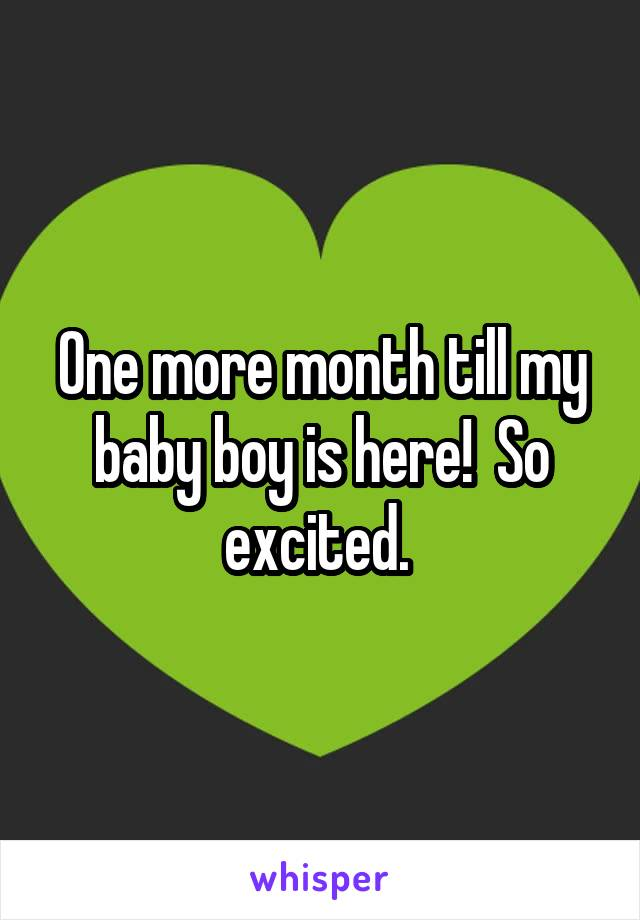 One more month till my baby boy is here!  So excited.