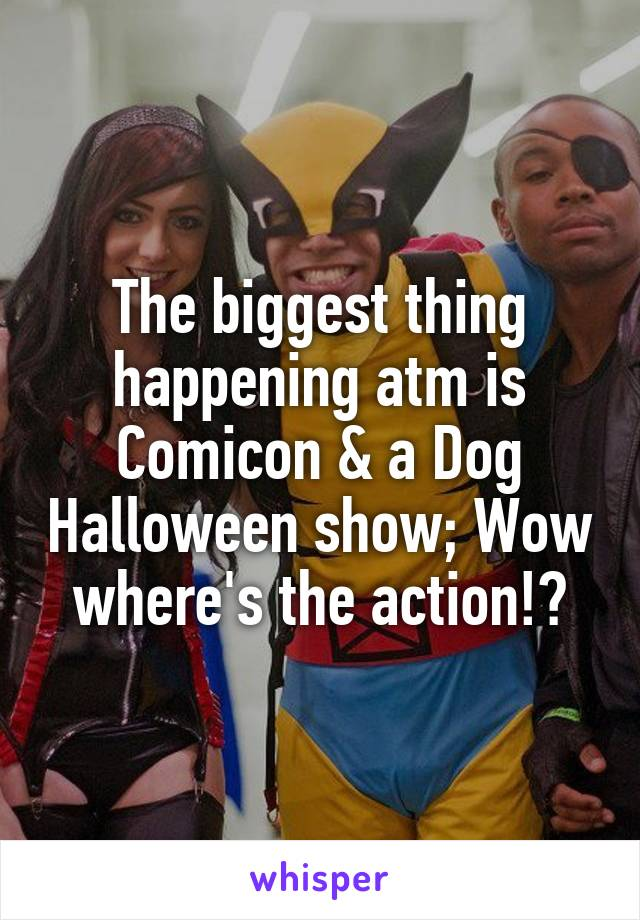 The biggest thing happening atm is Comicon & a Dog Halloween show; Wow where's the action!?