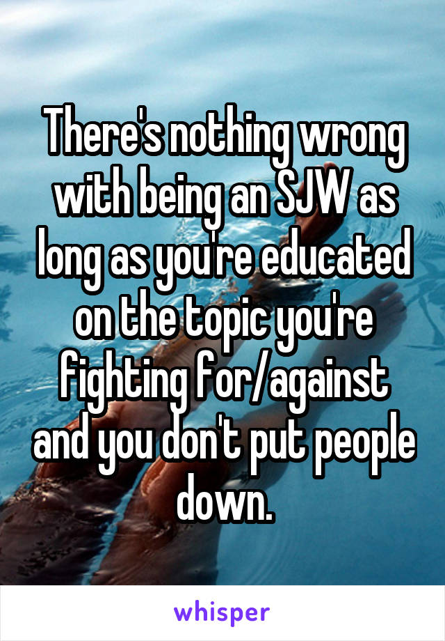 There's nothing wrong with being an SJW as long as you're educated on the topic you're fighting for/against and you don't put people down.