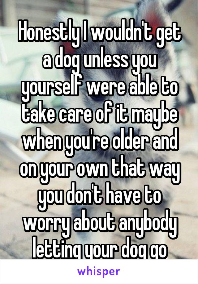 Honestly I wouldn't get a dog unless you yourself were able to take care of it maybe when you're older and on your own that way you don't have to worry about anybody letting your dog go