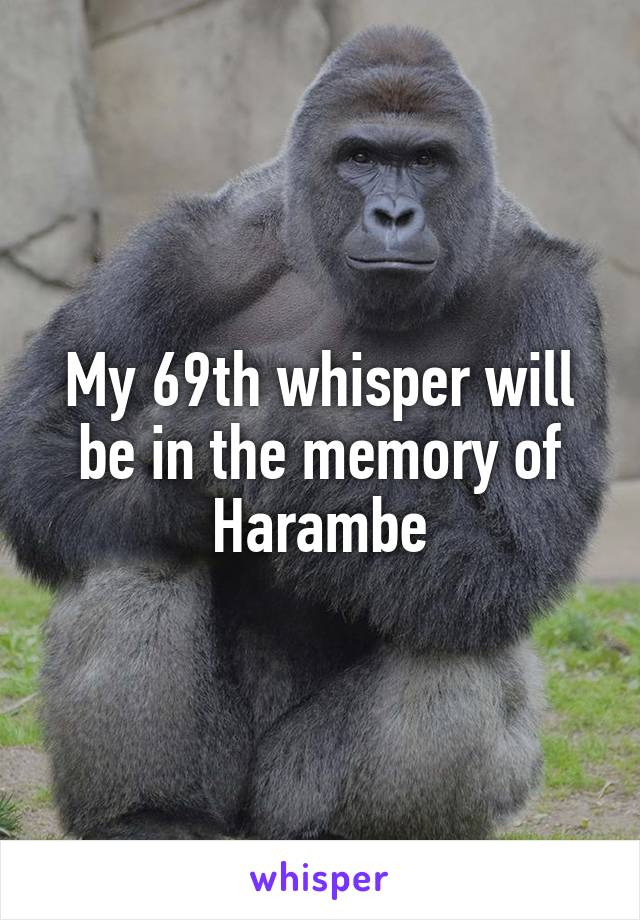 My 69th whisper will be in the memory of Harambe