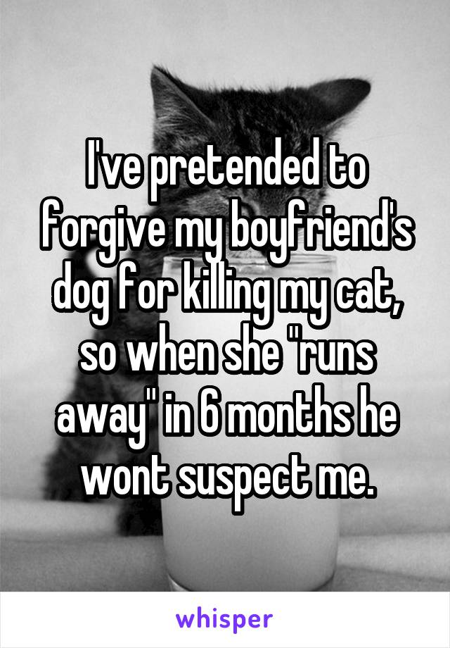 "I've pretended to forgive my boyfriend's dog for killing my cat, so when she ""runs away"" in 6 months he wont suspect me."