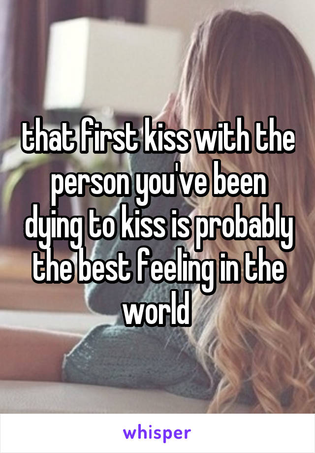 that first kiss with the person you've been dying to kiss is probably the best feeling in the world